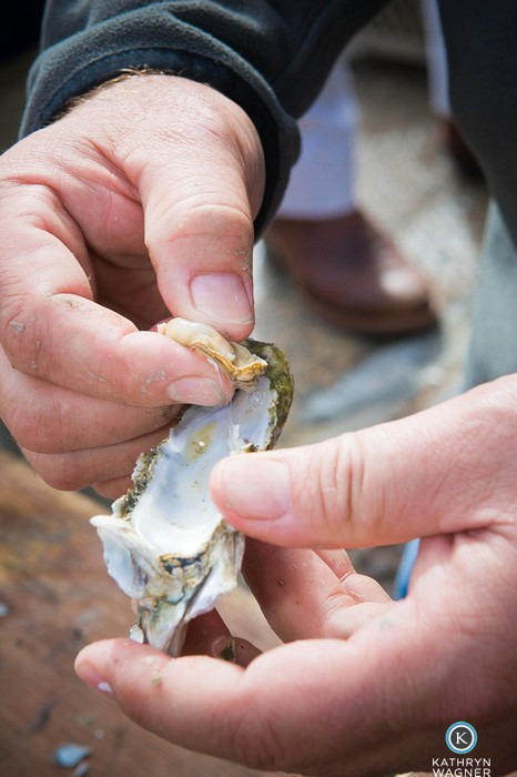 How to eat an oyster…